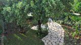 garden_17