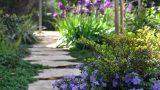 garden_3