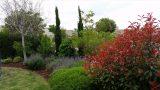 garden_30
